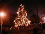 Highlight for Album: Balboa Park Xmas 01